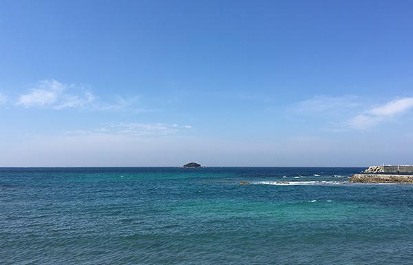 下関・豊北町の海の幸