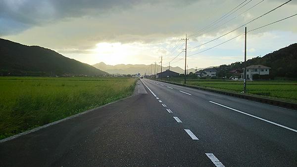 台風一過の1日